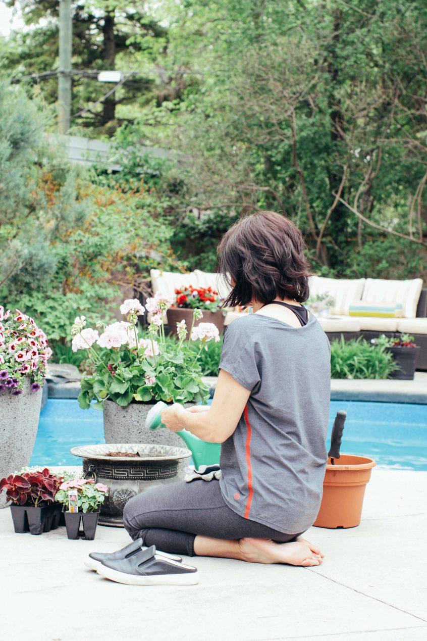 Back yard gardening