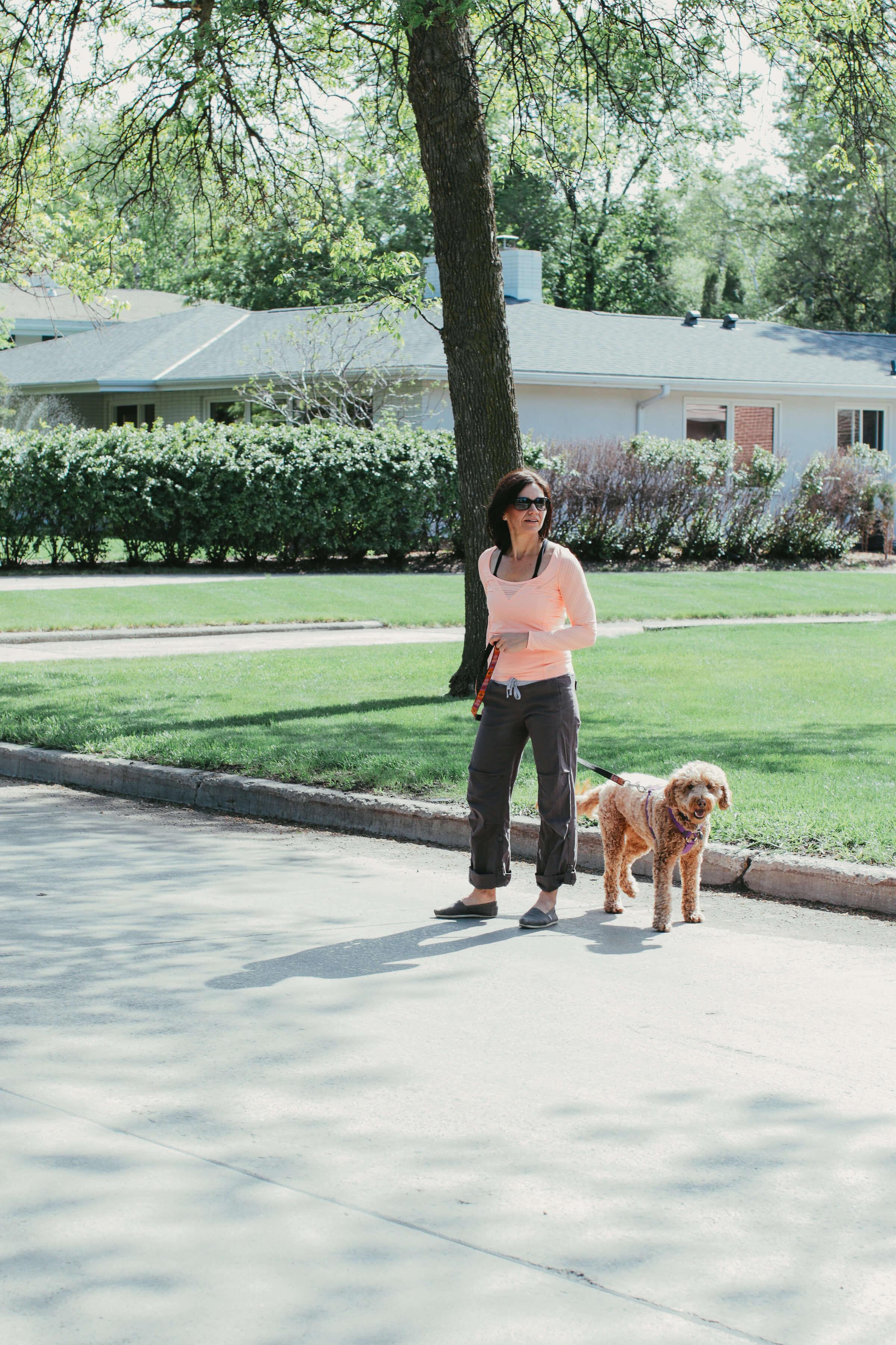Taking dog for a walk
