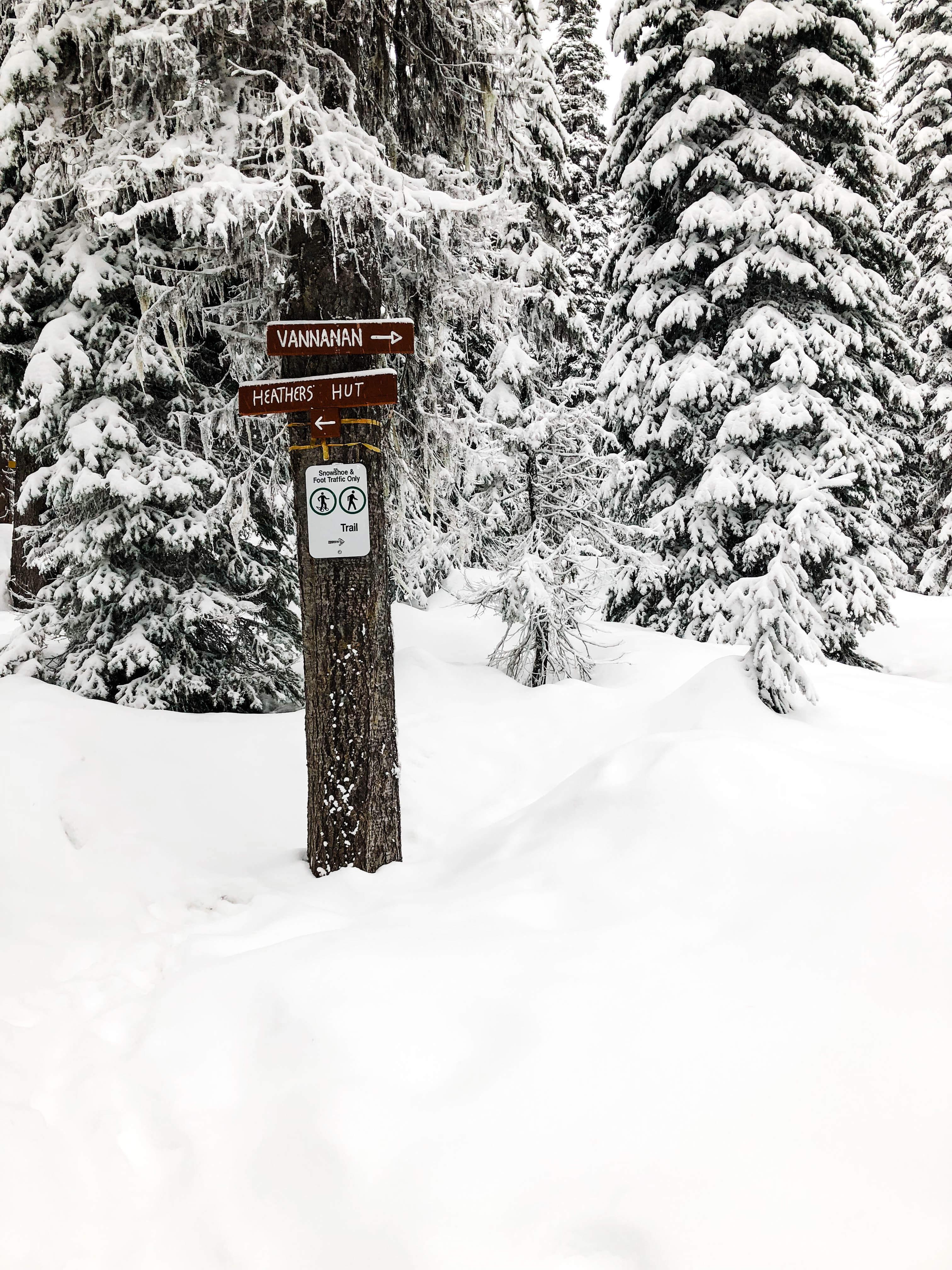 Winter magic - Big White
